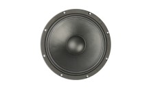 12″ PA 75125 M FABULOUS BY ACR
